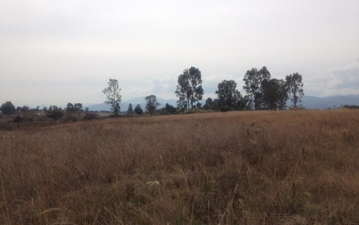 Foto de terreno comercial en venta en  , malinaltenango, ixtapan de la sal, méxico, 1201265 No. 04