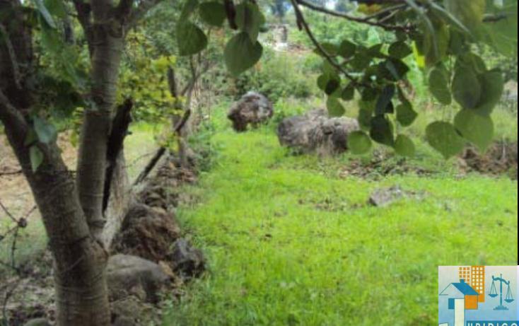 Foto de terreno habitacional en venta en  , mancera, atlatlahucan, morelos, 1593689 No. 06