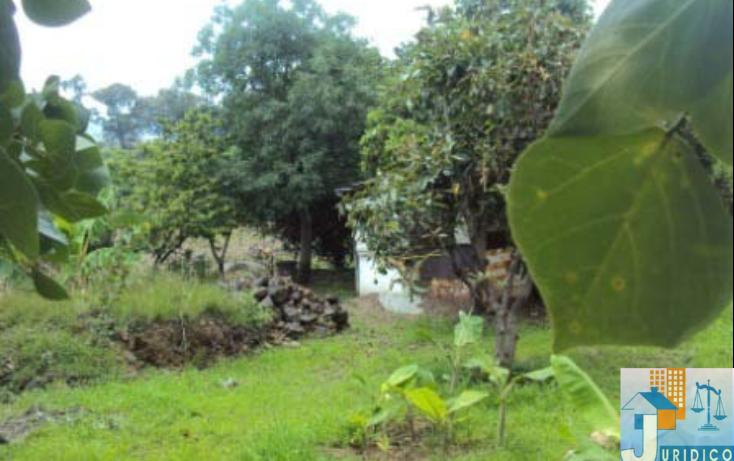 Foto de terreno habitacional en venta en  , mancera, atlatlahucan, morelos, 1593689 No. 08