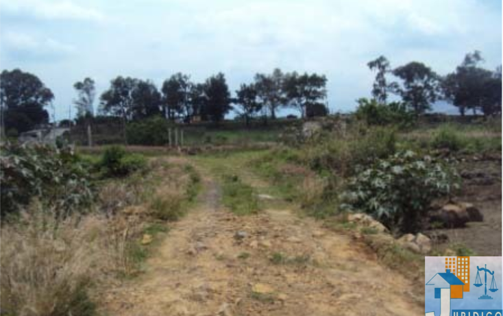 Foto de terreno habitacional en venta en  , mancera, atlatlahucan, morelos, 1593689 No. 10