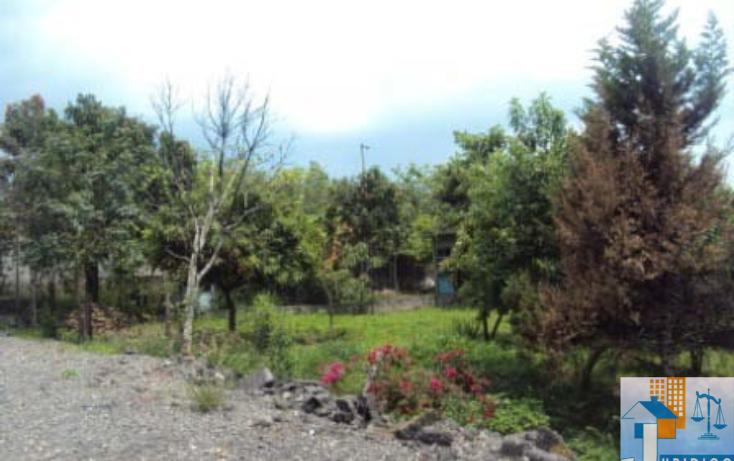 Foto de terreno habitacional en venta en  , mancera, atlatlahucan, morelos, 1593689 No. 13