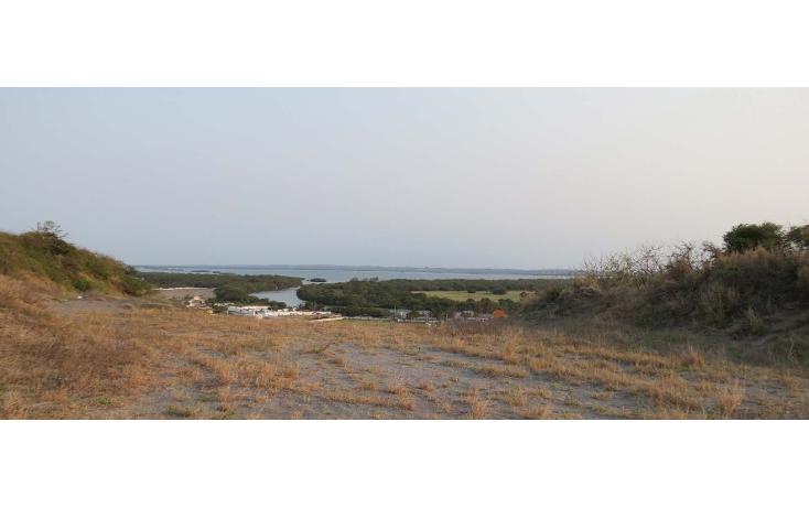 Foto de terreno habitacional en venta en  , mandinga de agua, alvarado, veracruz de ignacio de la llave, 1091887 No. 07