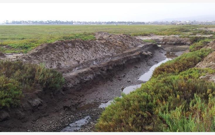 Foto de terreno comercial en venta en  , maneadero, ensenada, baja california, 879629 No. 18