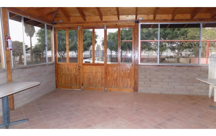 Foto de local en venta en maneadero , ensenada centro, ensenada, baja california, 737697 No. 14