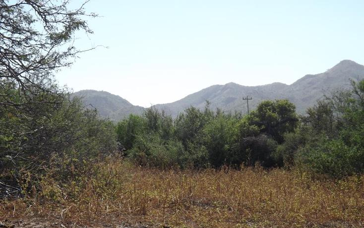 Foto de terreno habitacional en venta en manzana 001 fraccionamiento los martires lote 17, buena vista, los cabos, baja california sur, 1697396 no 02