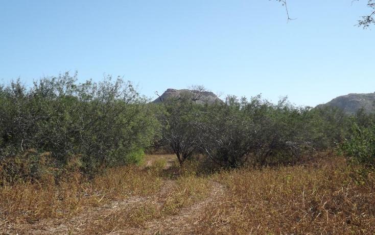 Foto de terreno habitacional en venta en manzana 001 fraccionamiento los martires lote 17, buena vista, los cabos, baja california sur, 1697396 no 03