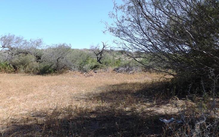 Foto de terreno habitacional en venta en manzana 001 fraccionamiento los martires lote 17, buena vista, los cabos, baja california sur, 1697396 no 04
