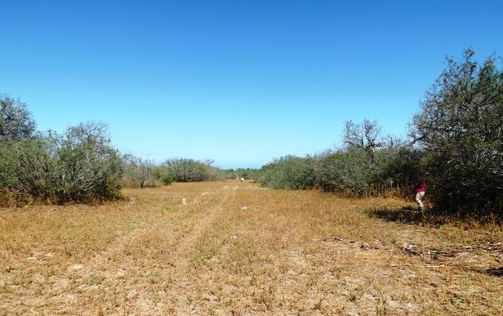 Foto de terreno habitacional en venta en manzana 001 fraccionamiento los martires lote 17, buena vista, los cabos, baja california sur, 1697396 no 06