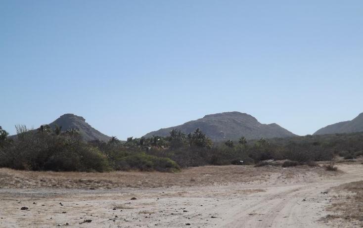 Foto de terreno habitacional en venta en manzana 001 fraccionamiento los martires lote 17, buena vista, los cabos, baja california sur, 1697396 no 07