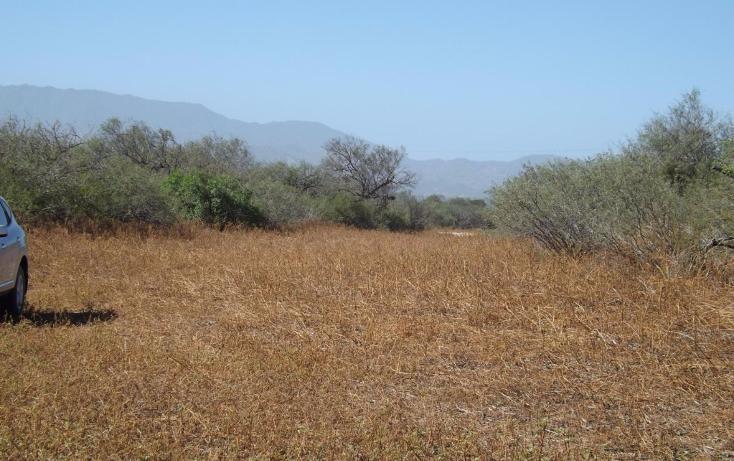 Foto de terreno habitacional en venta en manzana 001 fraccionamiento los martires lote 17, buena vista, los cabos, baja california sur, 1697396 no 10