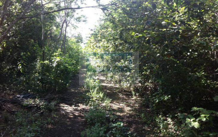 Foto de terreno habitacional en venta en manzana 186, tulum centro, tulum, quintana roo, 1592724 no 04
