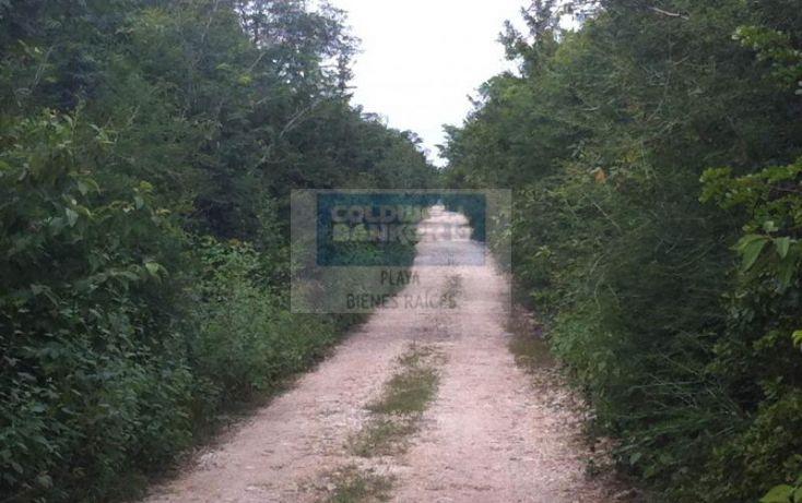 Foto de terreno habitacional en venta en manzana 186, tulum centro, tulum, quintana roo, 1592724 no 05