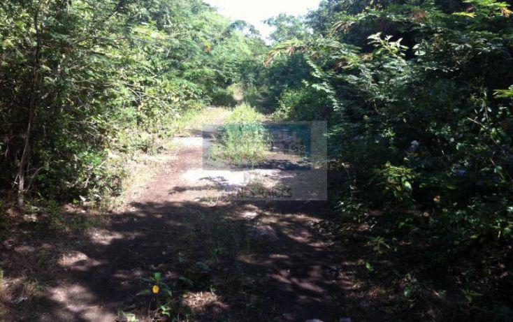 Foto de terreno habitacional en venta en manzana 186, tulum centro, tulum, quintana roo, 1592724 no 06