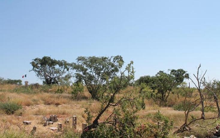 Foto de terreno habitacional en venta en  , el tezal, los cabos, baja california sur, 1770578 No. 05