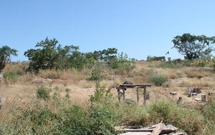 Foto de terreno habitacional en venta en  , el tezal, los cabos, baja california sur, 1770578 No. 07