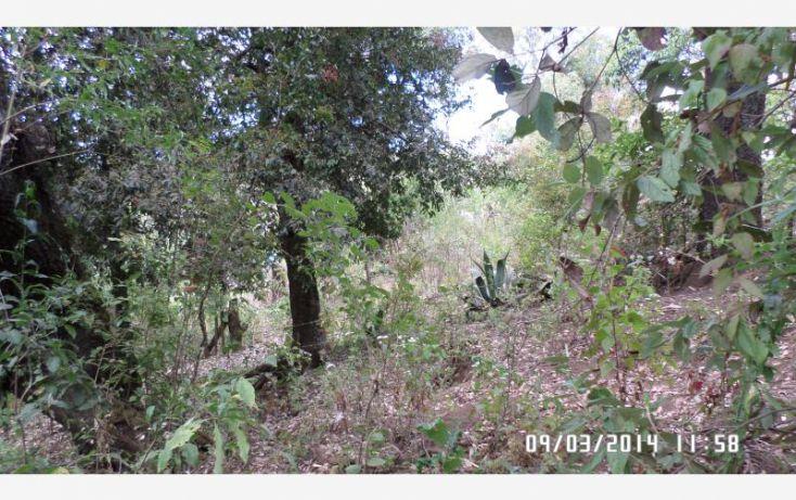 Foto de terreno habitacional en venta en manzana 60, el terrero, minatitlán, colima, 1161461 no 08