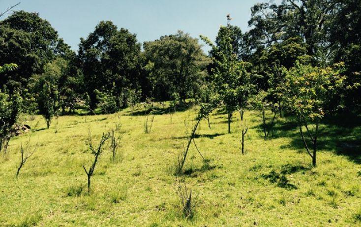 Foto de casa en venta en manzana quinta, canalejas, jilotepec, estado de méxico, 993273 no 21
