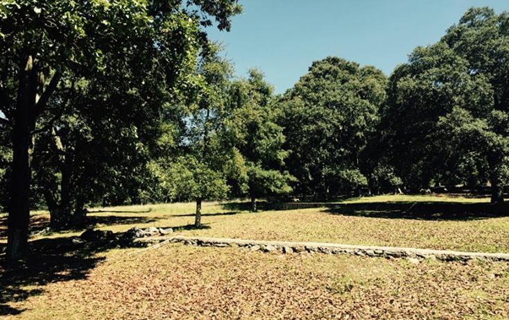 Foto de casa en venta en manzana quinta , canalejas, jilotepec, méxico, 993273 No. 04