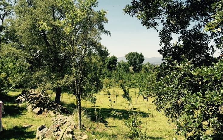 Foto de casa en venta en manzana quinta , canalejas, jilotepec, méxico, 993273 No. 17