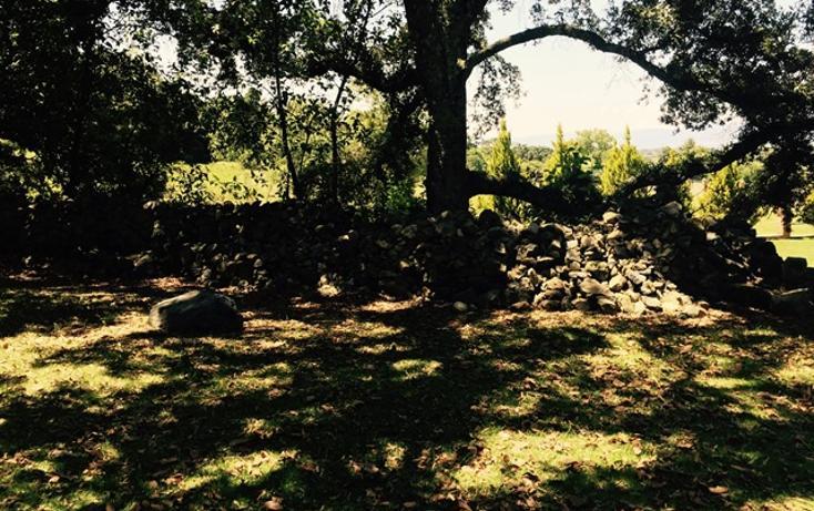 Foto de casa en venta en manzana quinta , canalejas, jilotepec, méxico, 993273 No. 27