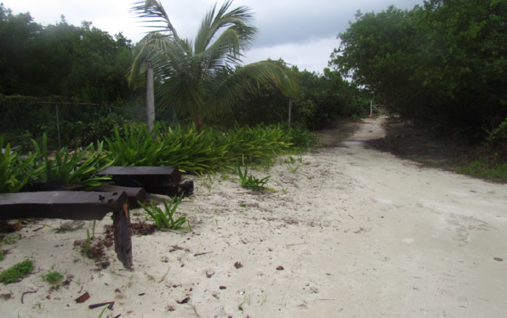 Foto de terreno habitacional en venta en  , mar caribe, isla mujeres, quintana roo, 1265235 No. 02