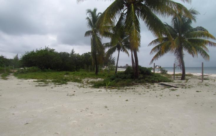 Foto de terreno habitacional en venta en  , mar caribe, isla mujeres, quintana roo, 1265235 No. 03