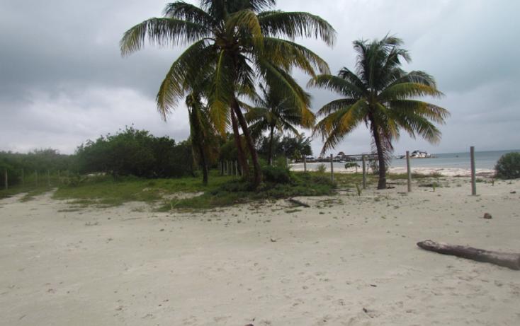 Foto de terreno habitacional en venta en  , mar caribe, isla mujeres, quintana roo, 1265235 No. 04