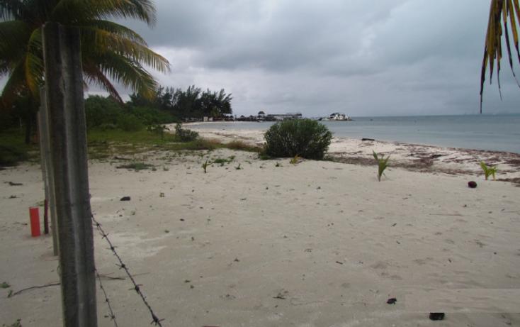 Foto de terreno habitacional en venta en  , mar caribe, isla mujeres, quintana roo, 1265235 No. 05