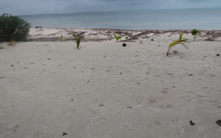 Foto de terreno habitacional en venta en  , mar caribe, isla mujeres, quintana roo, 1265235 No. 07