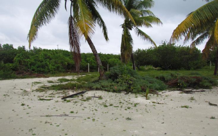 Foto de terreno habitacional en venta en  , mar caribe, isla mujeres, quintana roo, 1265235 No. 08