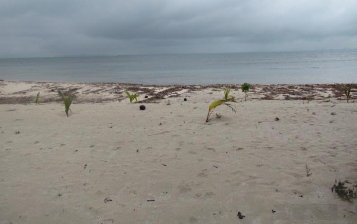 Foto de terreno habitacional en venta en  , mar caribe, isla mujeres, quintana roo, 1265235 No. 09