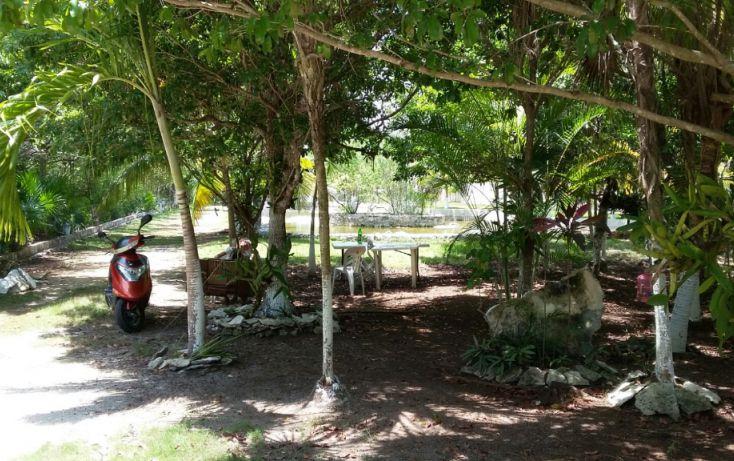 Foto de terreno habitacional en venta en, mar caribe, isla mujeres, quintana roo, 1423129 no 04