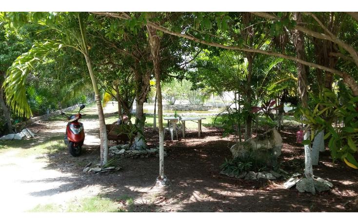 Foto de terreno habitacional en venta en  , mar caribe, isla mujeres, quintana roo, 1423129 No. 04