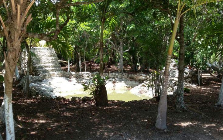 Foto de terreno habitacional en venta en, mar caribe, isla mujeres, quintana roo, 1423129 no 06