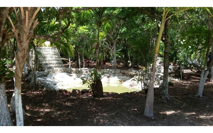 Foto de terreno habitacional en venta en  , mar caribe, isla mujeres, quintana roo, 1423129 No. 06