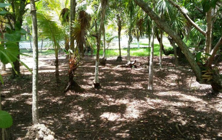 Foto de terreno habitacional en venta en, mar caribe, isla mujeres, quintana roo, 1423129 no 07