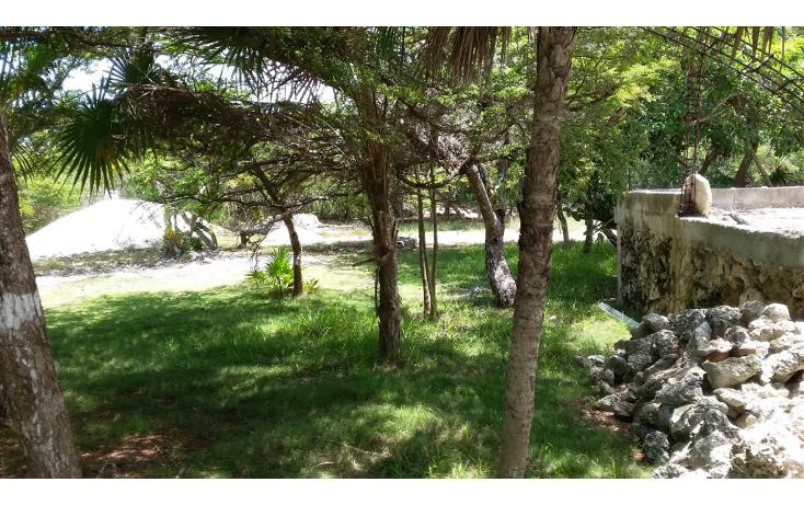 Foto de terreno habitacional en venta en  , mar caribe, isla mujeres, quintana roo, 1423129 No. 09