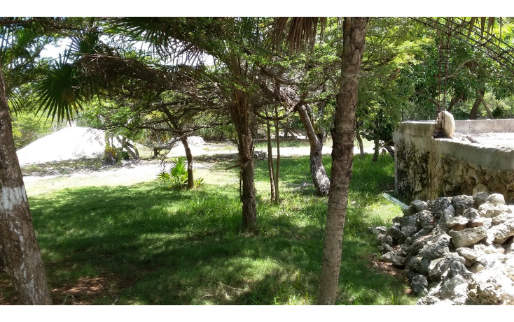 Foto de terreno habitacional en venta en  , mar caribe, isla mujeres, quintana roo, 1423129 No. 10