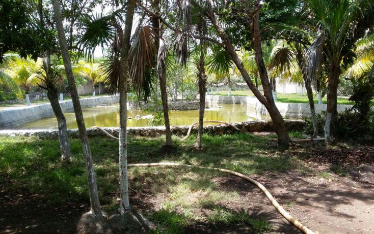 Foto de terreno habitacional en venta en, mar caribe, isla mujeres, quintana roo, 1423129 no 11