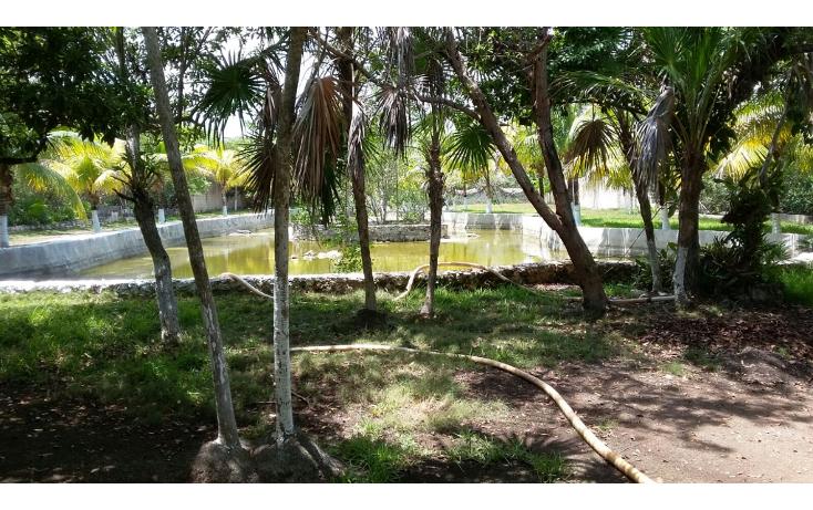 Foto de terreno habitacional en venta en  , mar caribe, isla mujeres, quintana roo, 1423129 No. 11
