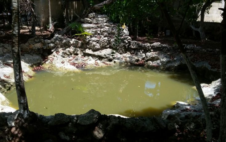 Foto de terreno habitacional en venta en, mar caribe, isla mujeres, quintana roo, 1423129 no 13