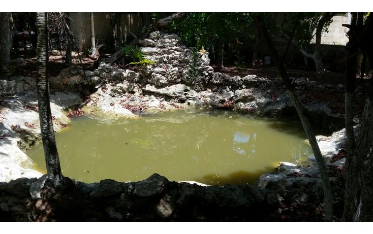 Foto de terreno habitacional en venta en  , mar caribe, isla mujeres, quintana roo, 1423129 No. 13