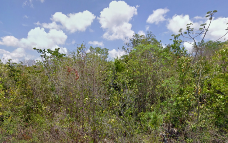 Foto de terreno habitacional en venta en, mar caribe, isla mujeres, quintana roo, 1721996 no 02