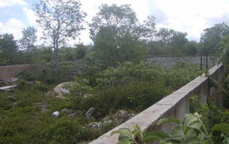 Foto de terreno habitacional en venta en, maravilla, cozumel, quintana roo, 1051939 no 04