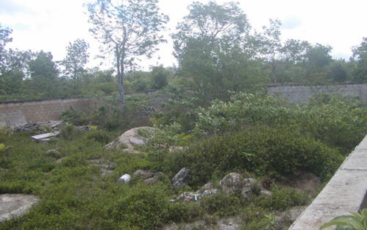 Foto de terreno habitacional en venta en  , maravilla, cozumel, quintana roo, 1051939 No. 06
