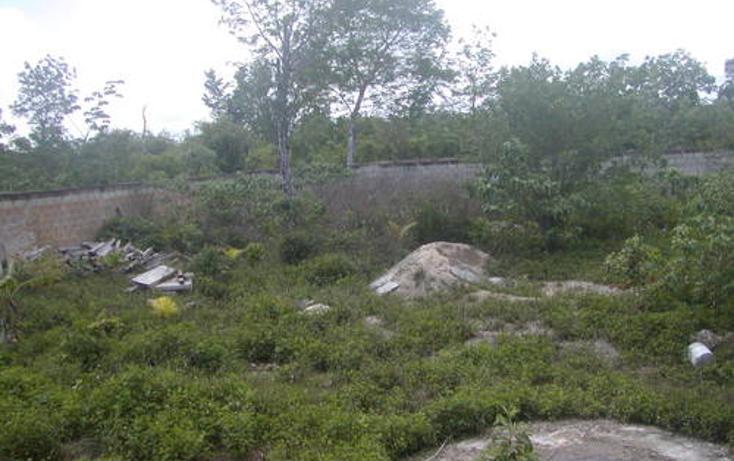 Foto de terreno habitacional en venta en  , maravilla, cozumel, quintana roo, 1051939 No. 09