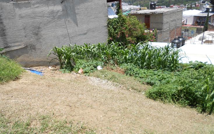 Foto de terreno habitacional en venta en  , margarita viguri, chilpancingo de los bravo, guerrero, 1619452 No. 05