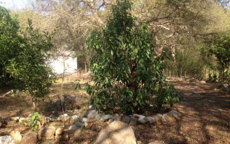 Foto de terreno habitacional en venta en margaritas, el cerrito, santiago, nuevo león, 1720256 no 02