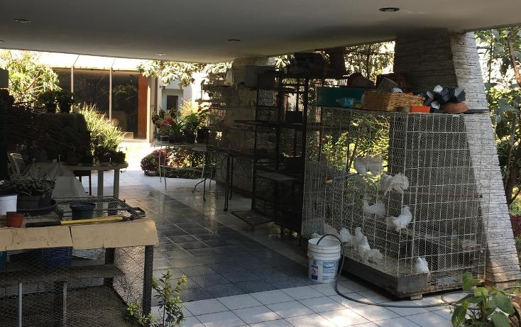 Foto de casa en venta en margaritas , florida, álvaro obregón, distrito federal, 3423248 No. 13