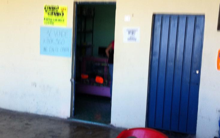 Foto de local en venta en  , maria luisa, mérida, yucatán, 1274237 No. 04